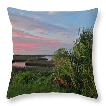 D32a-89 Sunset In Crystal River, Florida Photo Throw Pillow