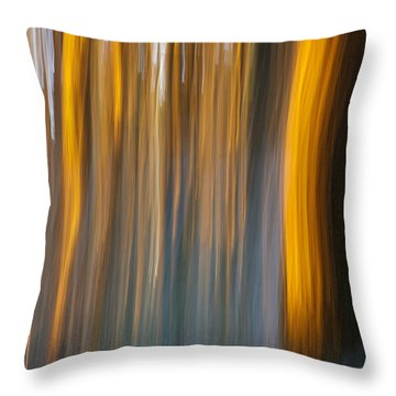 Throw Pillow featuring the photograph Sunset In Forest by Davorin Mance