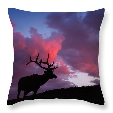Sunset In The Rockies Throw Pillow