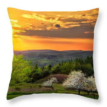Sunset In Tioga County Pa Throw Pillow