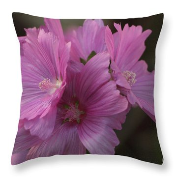 Sunset Kissed Throw Pillow