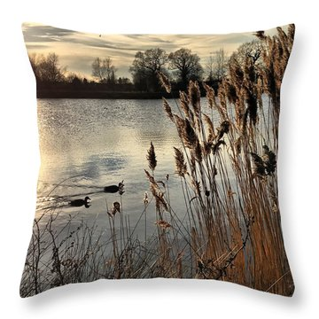 Sunset Lake  Throw Pillow