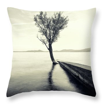 Sunset Landscape With A Tree In The Background Immersed In The L Throw Pillow