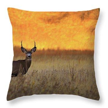 Throw Pillow featuring the photograph Sunset Lover by Kadek Susanto