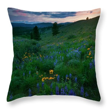 Sunset Meadow Trail Throw Pillow by Mike  Dawson