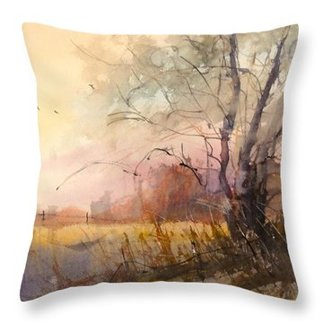 Sunset On 108th Throw Pillow
