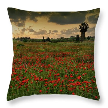 Sunset On A Poppies Field Throw Pillow