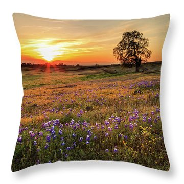 Sunset On North Table Mountain Throw Pillow