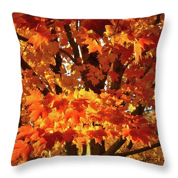 Throw Pillow featuring the photograph Sunset On Sugar Maple by Ray Mathis