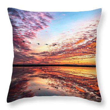 Sunset On The Pacific Flyway Throw Pillow