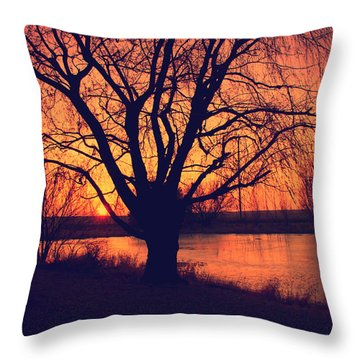 Sunset On Willow Pond Throw Pillow by Kathy M Krause