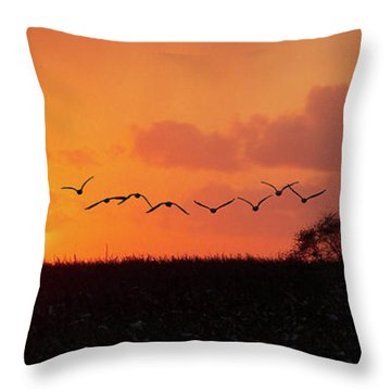 Sunset Over Easy Throw Pillow by Sue Stefanowicz