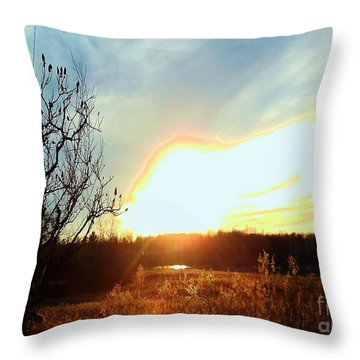 Sunset Over Fields Throw Pillow