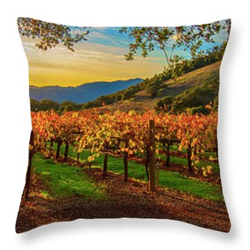 Sunset Over Gamble Vineyards Throw Pillow