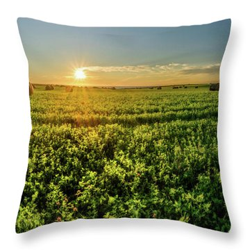Throw Pillow featuring the photograph Sunset Over Prince Edward Island Clover by Chris Bordeleau