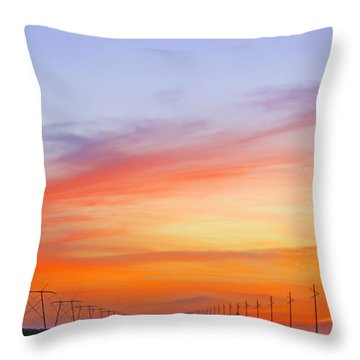 Sunset Over The Glades Throw Pillow