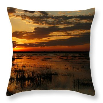 Sunset Over The Marsh Throw Pillow