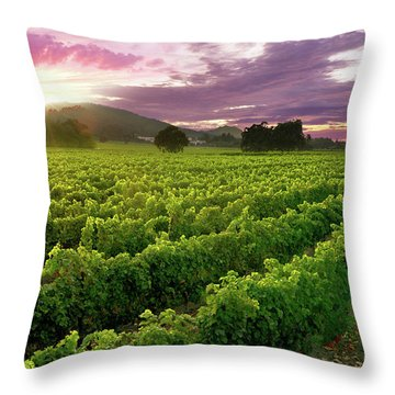Sunset Over The Vineyard Throw Pillow