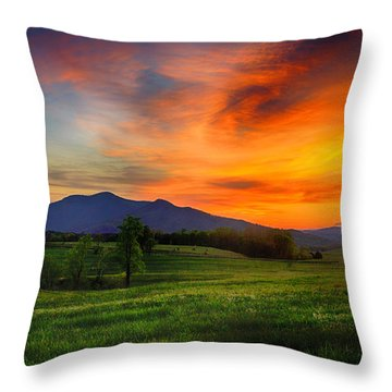 Sunset Pasture Throw Pillow
