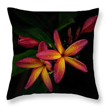 Sunset Plumerias In Bloom #2 Throw Pillow