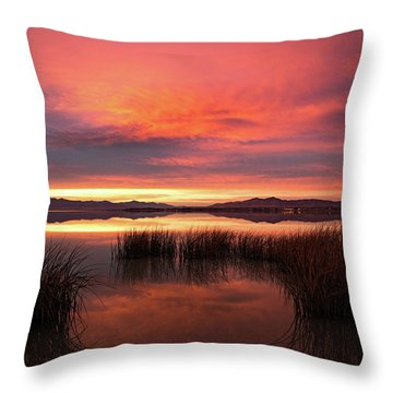 Sunset Reeds On Utah Lake Throw Pillow