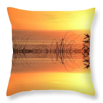 Sunset Reflection Throw Pillow by Sheila Ping