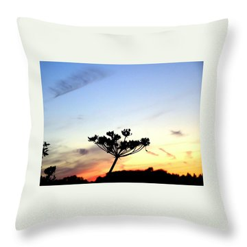 Sunset Seedhead Silhouette  Throw Pillow