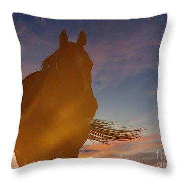 Throw Pillow featuring the photograph Sunset Silhouette by Carol Lynn Coronios