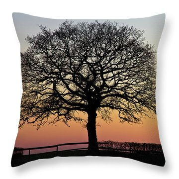 Throw Pillow featuring the photograph Sunset Silhouette by Clare Bambers