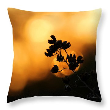 Sunset Silhouette Of Foliage Throw Pillow