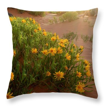 Sunset Sit Throw Pillow