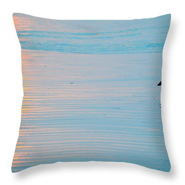 Sunset Stroll Throw Pillow by AJ  Schibig