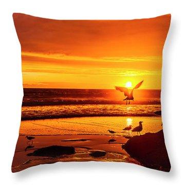 Sunset Surprise Pano Throw Pillow