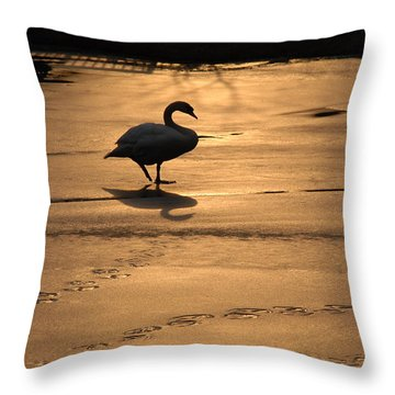 Throw Pillow featuring the photograph Sunset Swan by Richard Bryce and Family