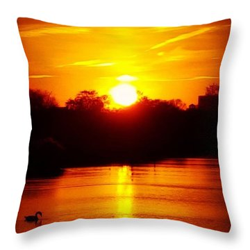 Sunset Swan Throw Pillow