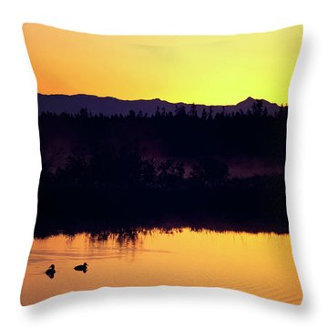 Throw Pillow featuring the photograph Sunset Swim by Sue Collura