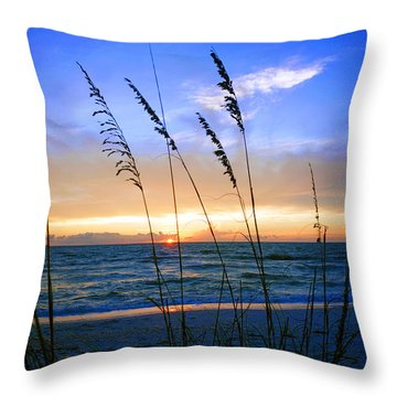 Sunset Thru The Sea Oats At Delnor Wiggins Throw Pillow