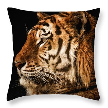 Sunset Tiger Throw Pillow