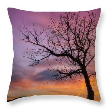 Sunset Tree Throw Pillow by Darren White
