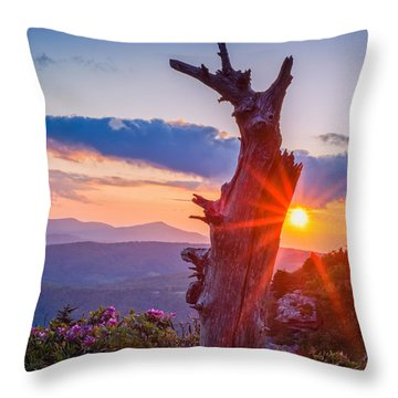 Sunset Tree Throw Pillow