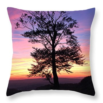 Sunset Tree Throw Pillow by RKAB Works