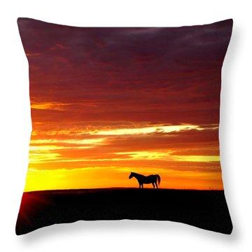 Sunset Watcher Throw Pillow