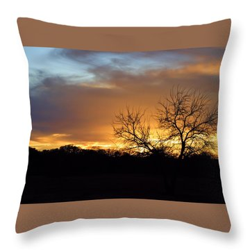Sunset With Tree Silhouette Throw Pillow by Linda Phelps
