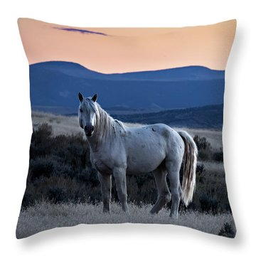 Sunset With Wild Stallion Tripod In Sand Wash Basin Throw Pillow