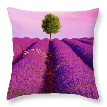 Sunsets Are Purple Throw Pillow