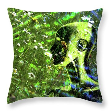 Throw Pillow featuring the photograph Sunshine And Daisies by LemonArt Photography