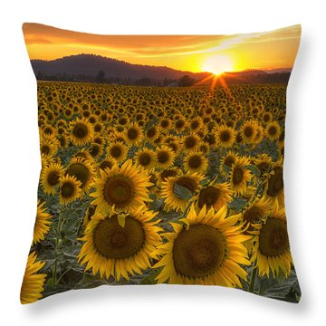 Sunshine And Happiness Throw Pillow
