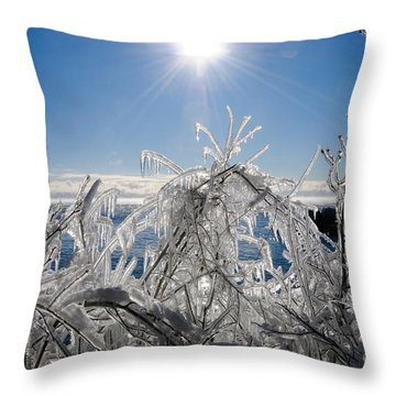 Sunshine And Ice Throw Pillow by Sandra Updyke