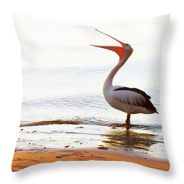 Sunshine Coast Pelican Throw Pillow