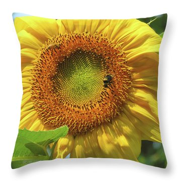 Sunshine In The Garden 1 Throw Pillow by Brooks Garten Hauschild
